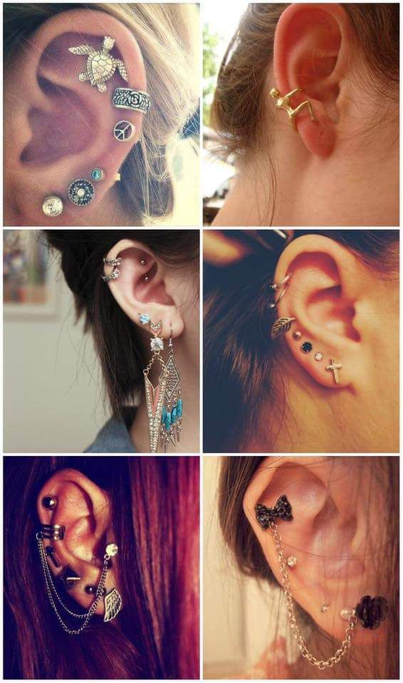 Lovely variations of piercing with hangings and studs