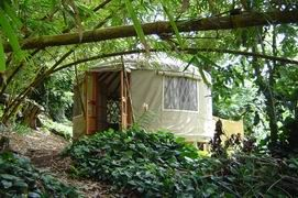 Treatments in the privacy of a serene yurt.