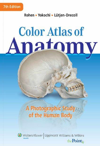 Color atlas of anatomy 7th edition pdf anatomy pdf and medicine color atlas of anatomy 7th edition pdf fandeluxe Gallery