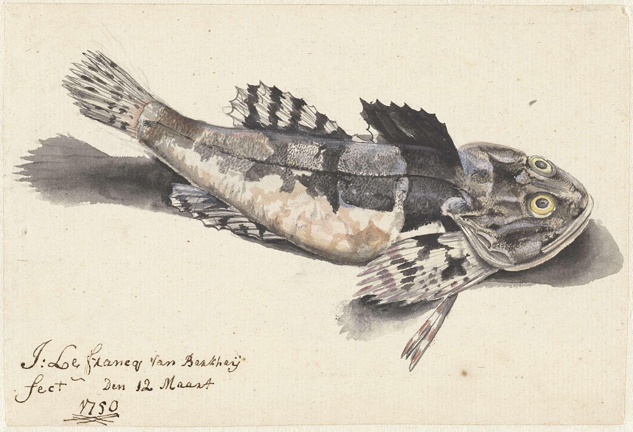 Johannes le Francq van Berkhey | Zeedonderpad, Johannes le Francq van Berkhey, 1750 |