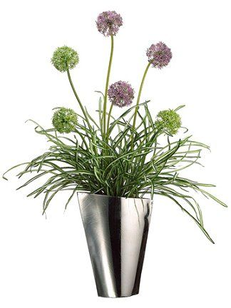 Allium Silk Flower Arrangement Celebrate Pinterest Flower