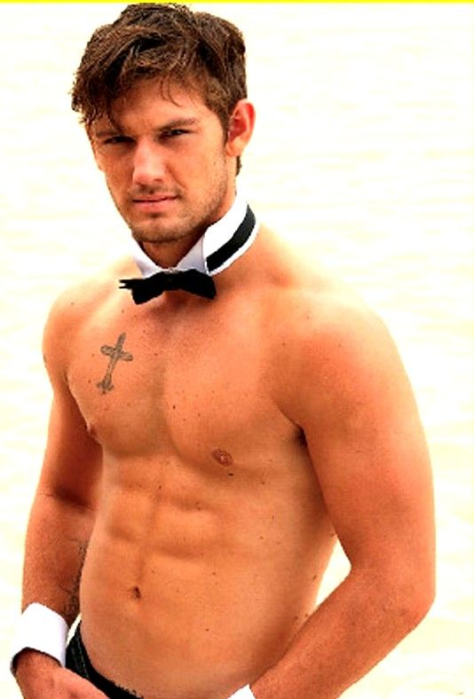 Well understand alex pettyfer shirtless would