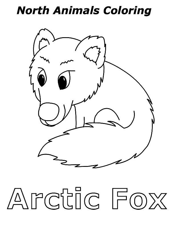 Ide oleh ToColor pada Artic Fox Coloring Pages