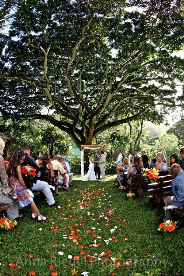 Wedding Ceremony At Waimea Valley Oahu Wedding Ceremony Location