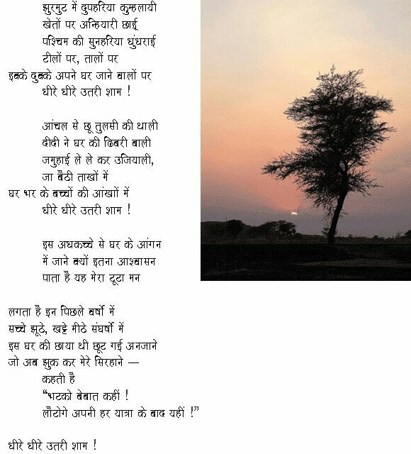 Beautiful Poem About Tree In Hindi Tree Poem Poetry Words
