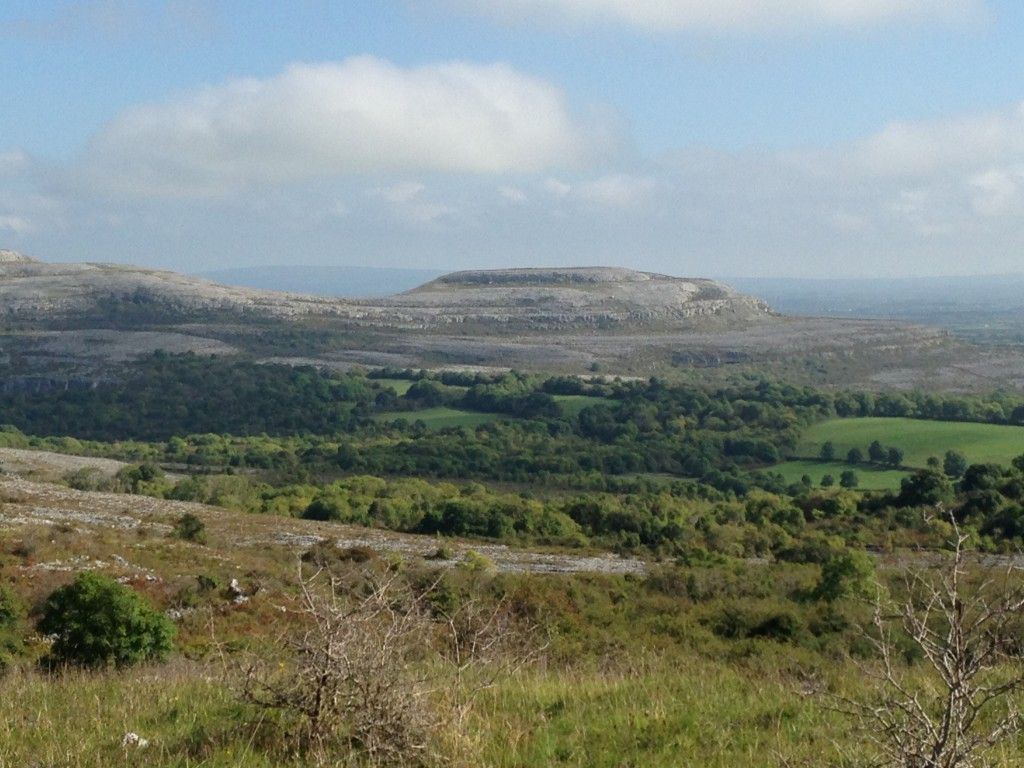 The Burren spot the reseeded fields down in the valley