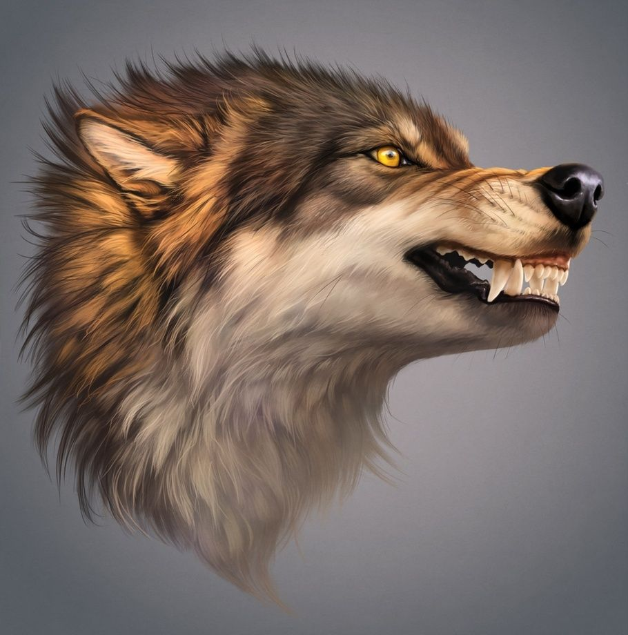 Angry Wolf An Art Print By Johanna Tarkela Angry Wolf Wolf Artwork Wolf Art
