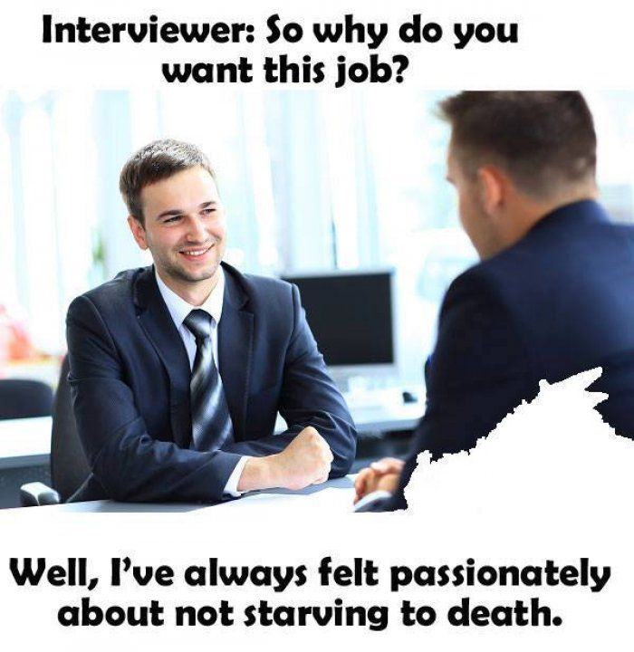 So why do you want this job - meme Pinterest Meme, Humour and Memes - why do i want this job