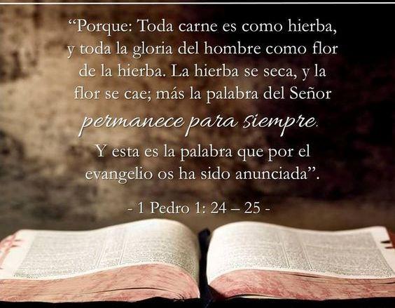 α JESUS NUESTRO SALVADOR Ω: Porque toda carne es como hierba y toda su gloria…