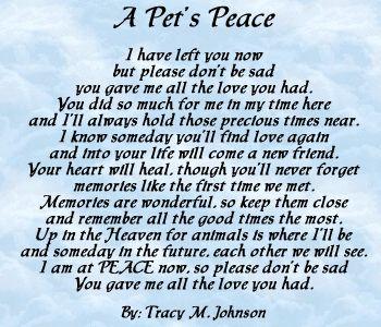 rainbow bridge dog loss quotes dog poems losing a pet