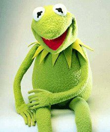 Pin On With Kermit