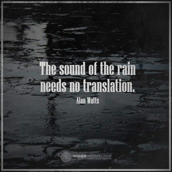 november rain writer