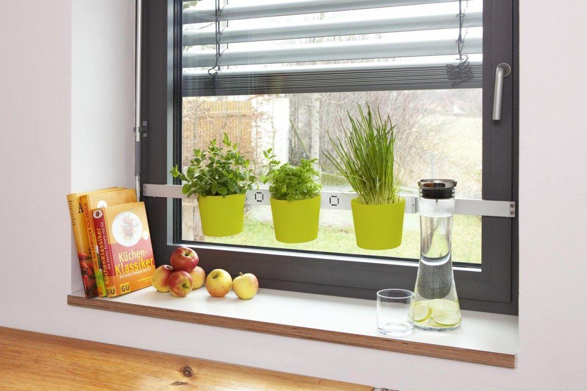 home kräuter- und pflanzenleiter vega in grün jetzt bestellen unter