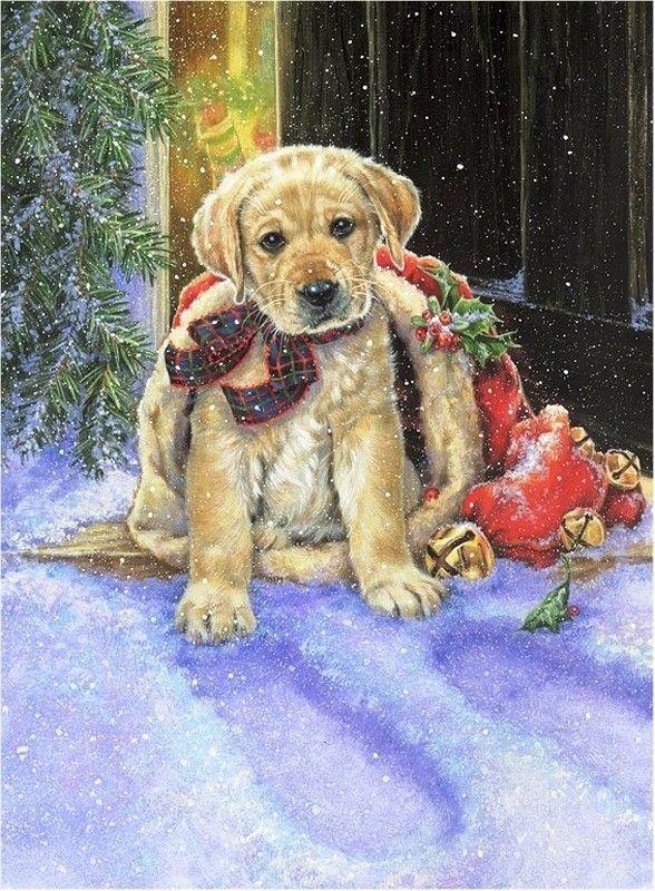 Здоровья благополучия, рождество открытки с собаками