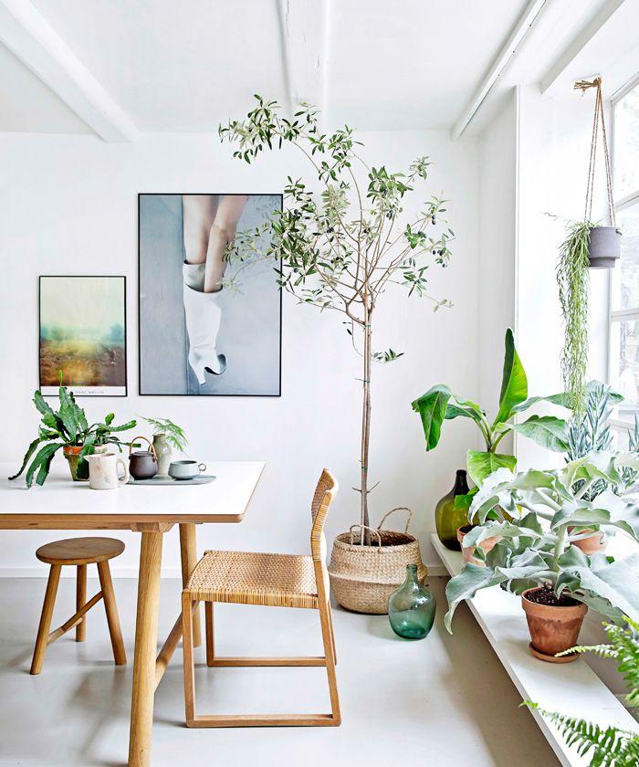 lichte urban jungle woonkamer met design eettafel en stoelen