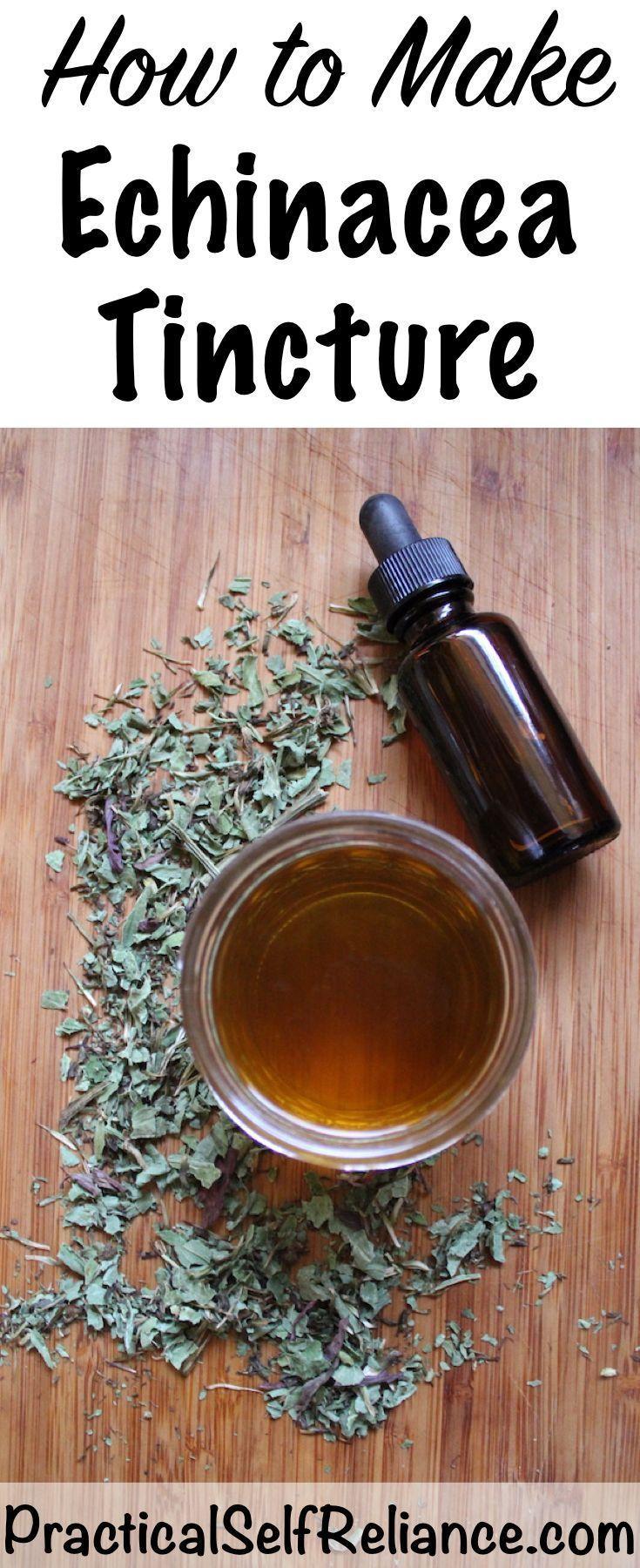 How to make echinacea tincture diy recipe herbal