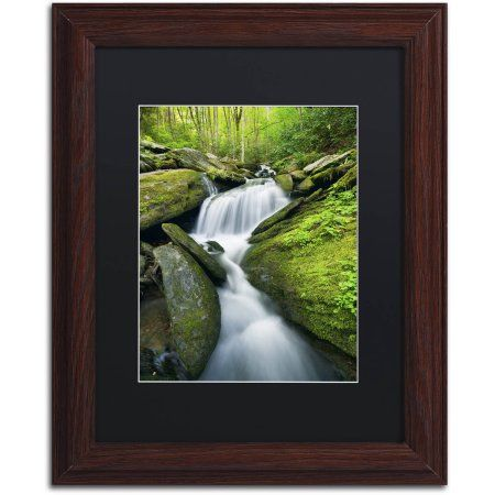 Trademark Fine Art 'Cascade Mossy Rocks' Canvas Art by Michael Blanchette Photography, Black Matte, Wood Frame, Assorted