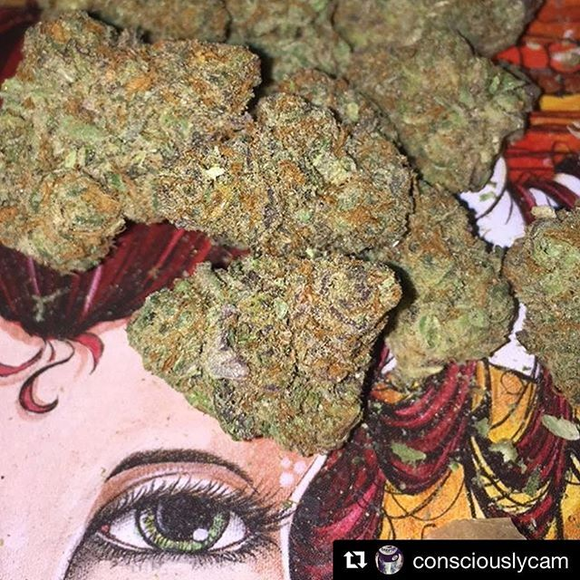 The Birthday Cake Is A Powerfully Tasty Strain And If You Think