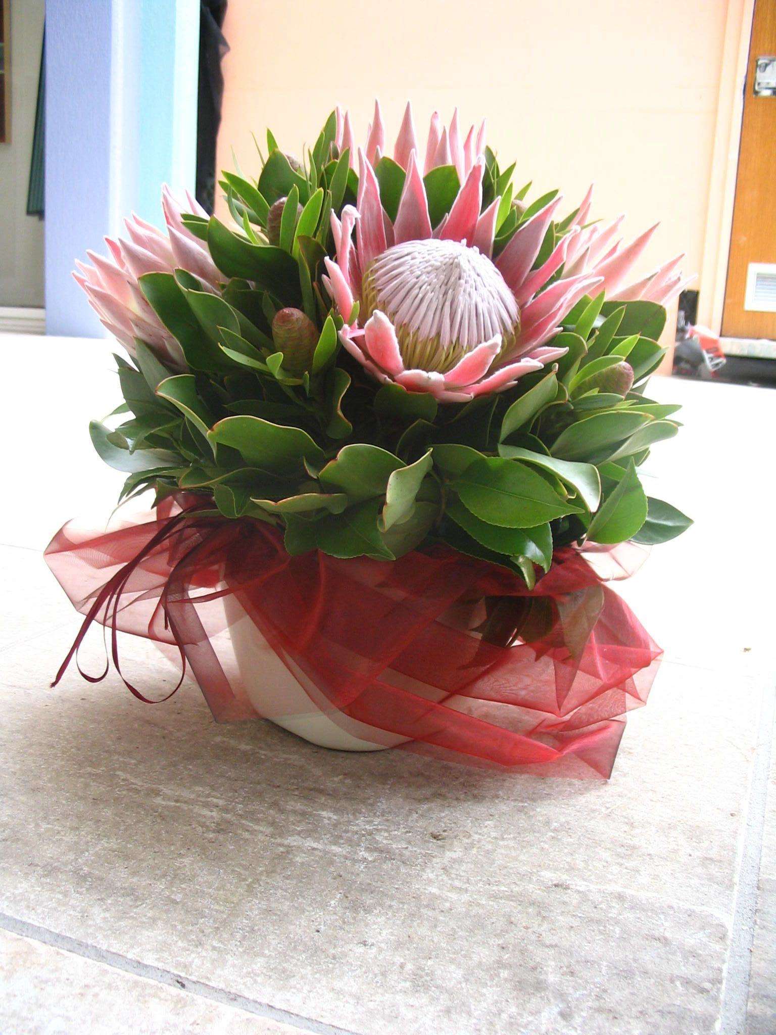 Image gallery king protea arrangement for Table 52 townsville