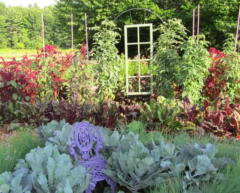 Creative plants supports at Tower Hill Botanic Garden | Tower Hill ...