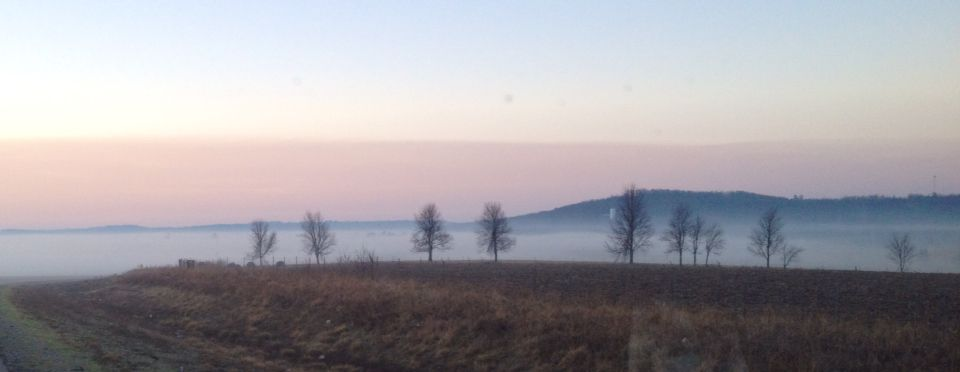 One Foggy Arkansas Morning 3/15