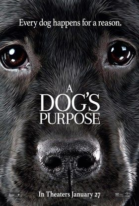 A Dog S Way Home Complet Streaming Vf