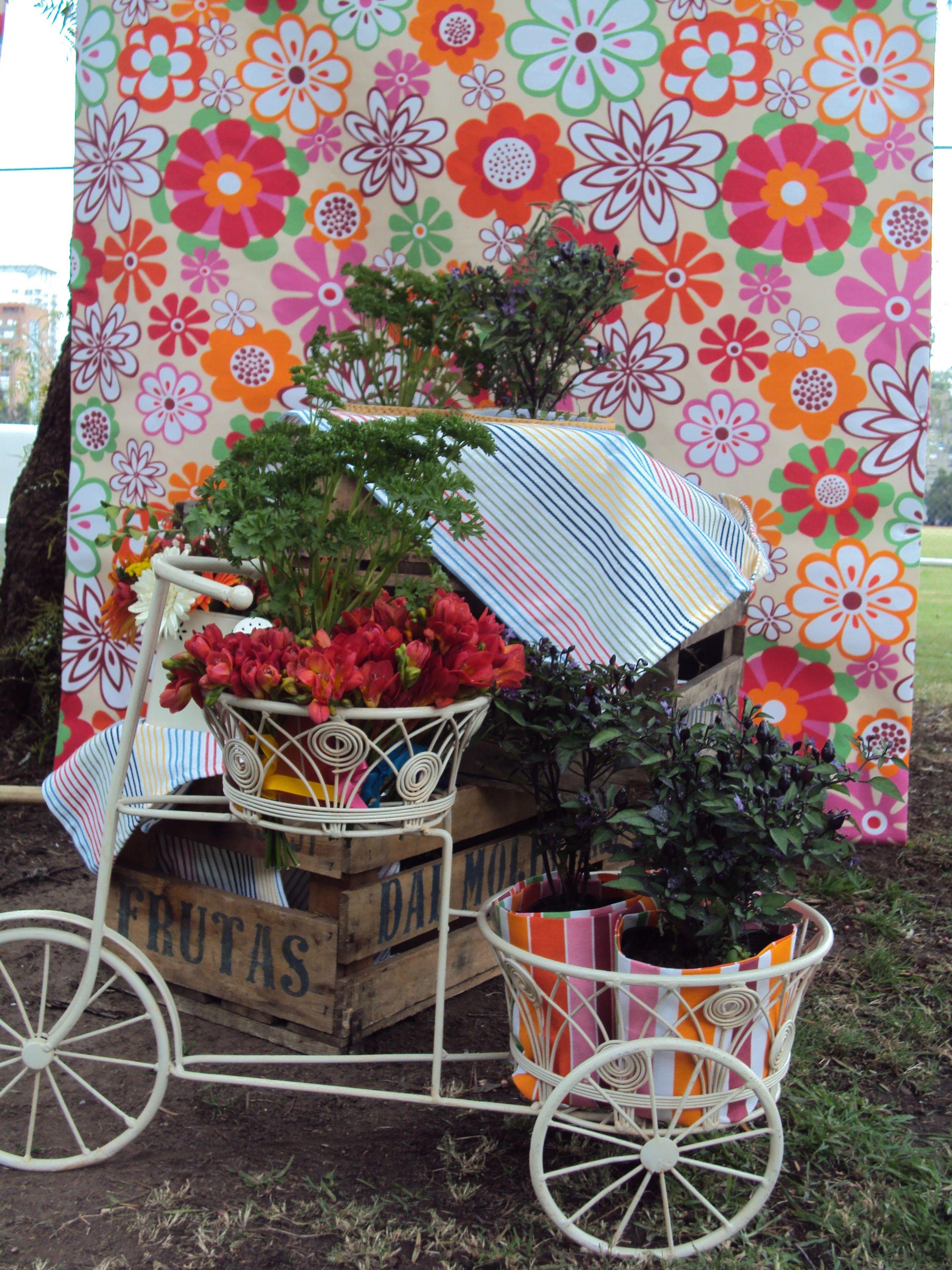 Ambientación colorida con onda jardinera, plantas y bicicletita de hierro