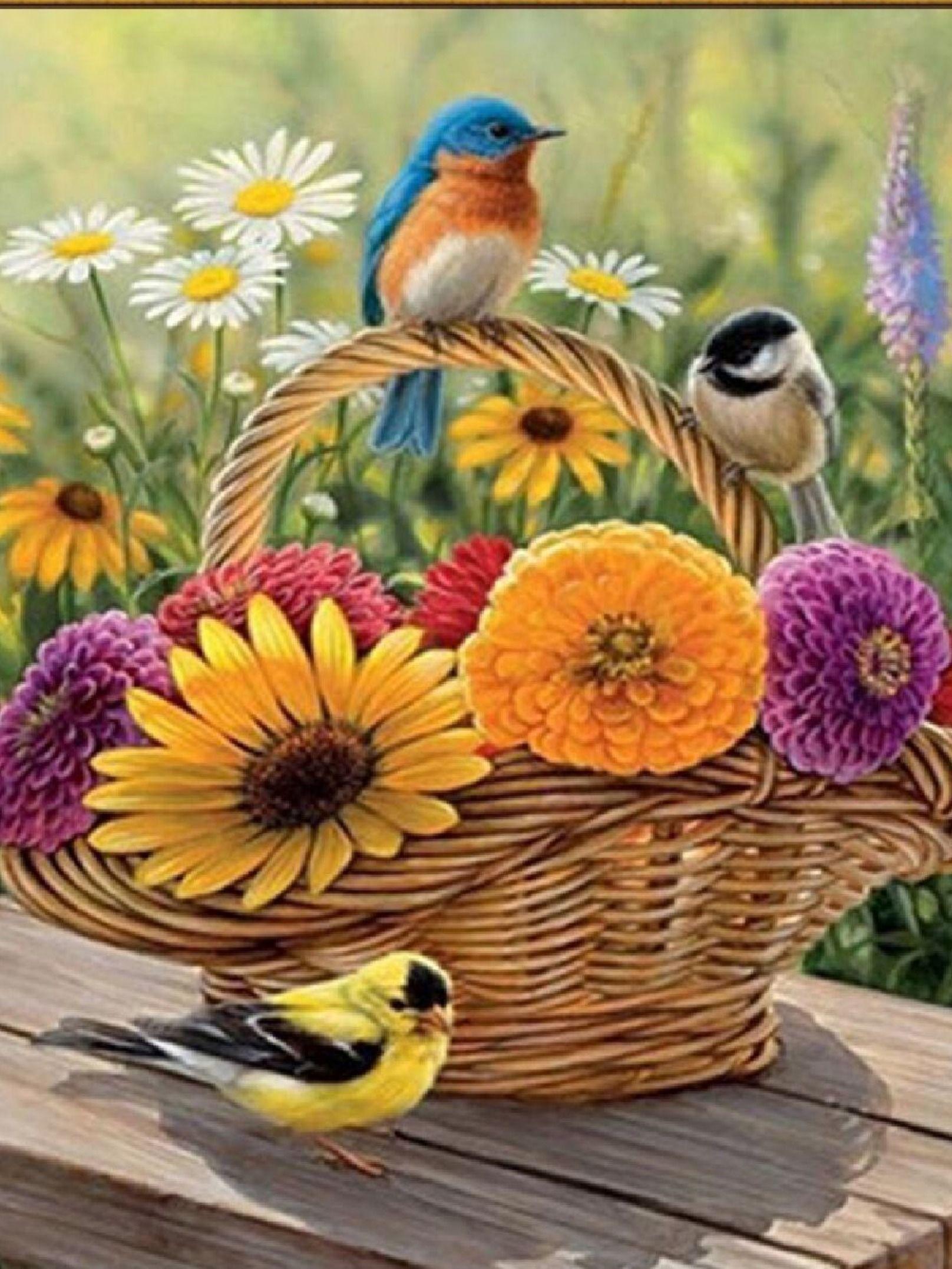 Доброе утро фотографии с птичкой