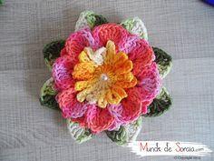 Flor Raio de Sol