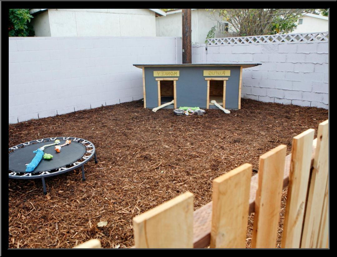 Small Backyard Landscaping Ideas With Dogs Thorplc