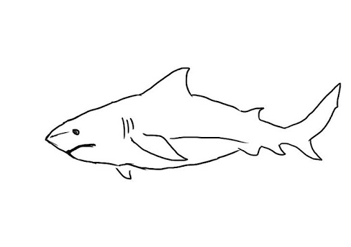 Cara Gambar Ikan Laut 501 Gambar Gambar Sketsa Ikan Lengkap Berserta Cara Membuatnya Ini Cara Paling Mudah Menggambar Ikan 100 Ga Gambar Cara Menggambar Ikan