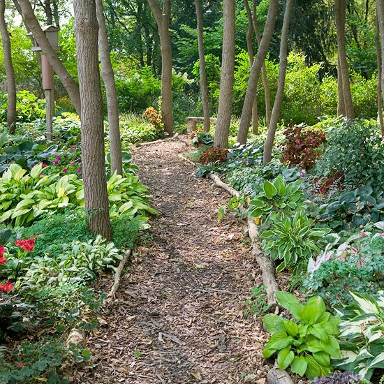 The Path Less Traveled: Impatiens, hosta, caladium, bleeding heart, mulched path = happy!