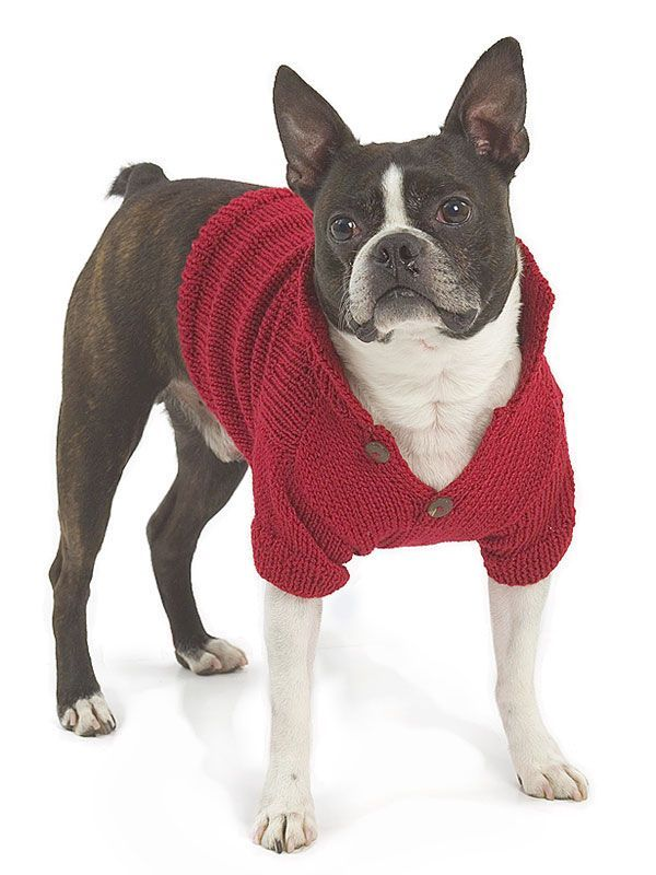 Dog sweater knitting pattern. This free pattern is available ...