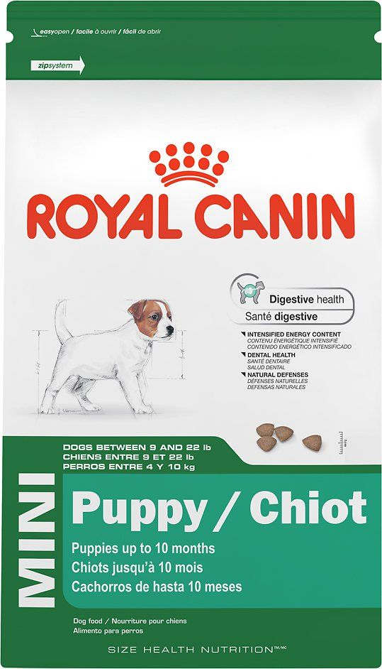Royal Canin Small Puppy Dry Dog Food Free Shipping Chewy Dry Dog Food Mini Puppies Dog Food Recipes