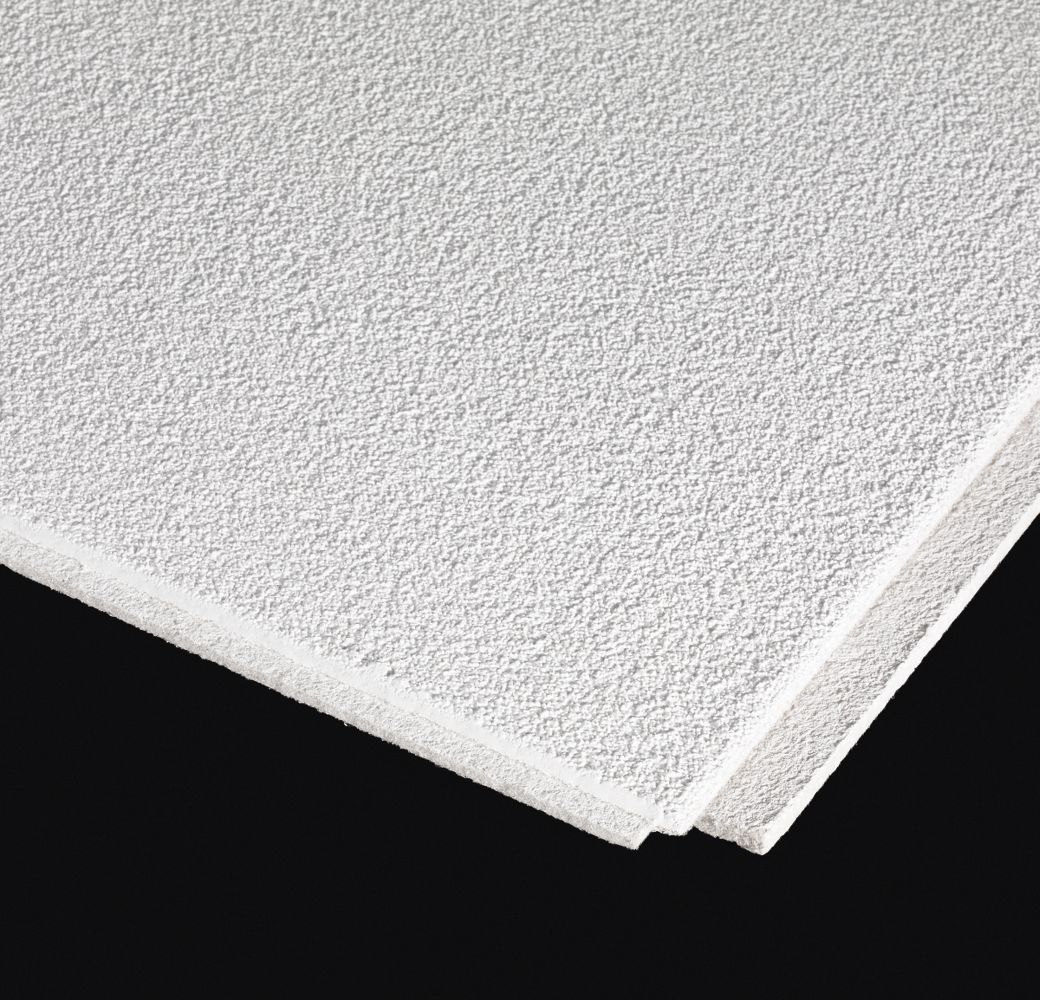 Sand Pebble HomeStyle Ceilings Textured Paintable 12 x 12
