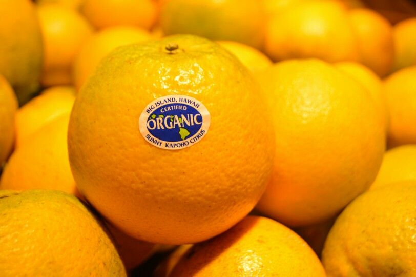 Sunny kapoho citrus