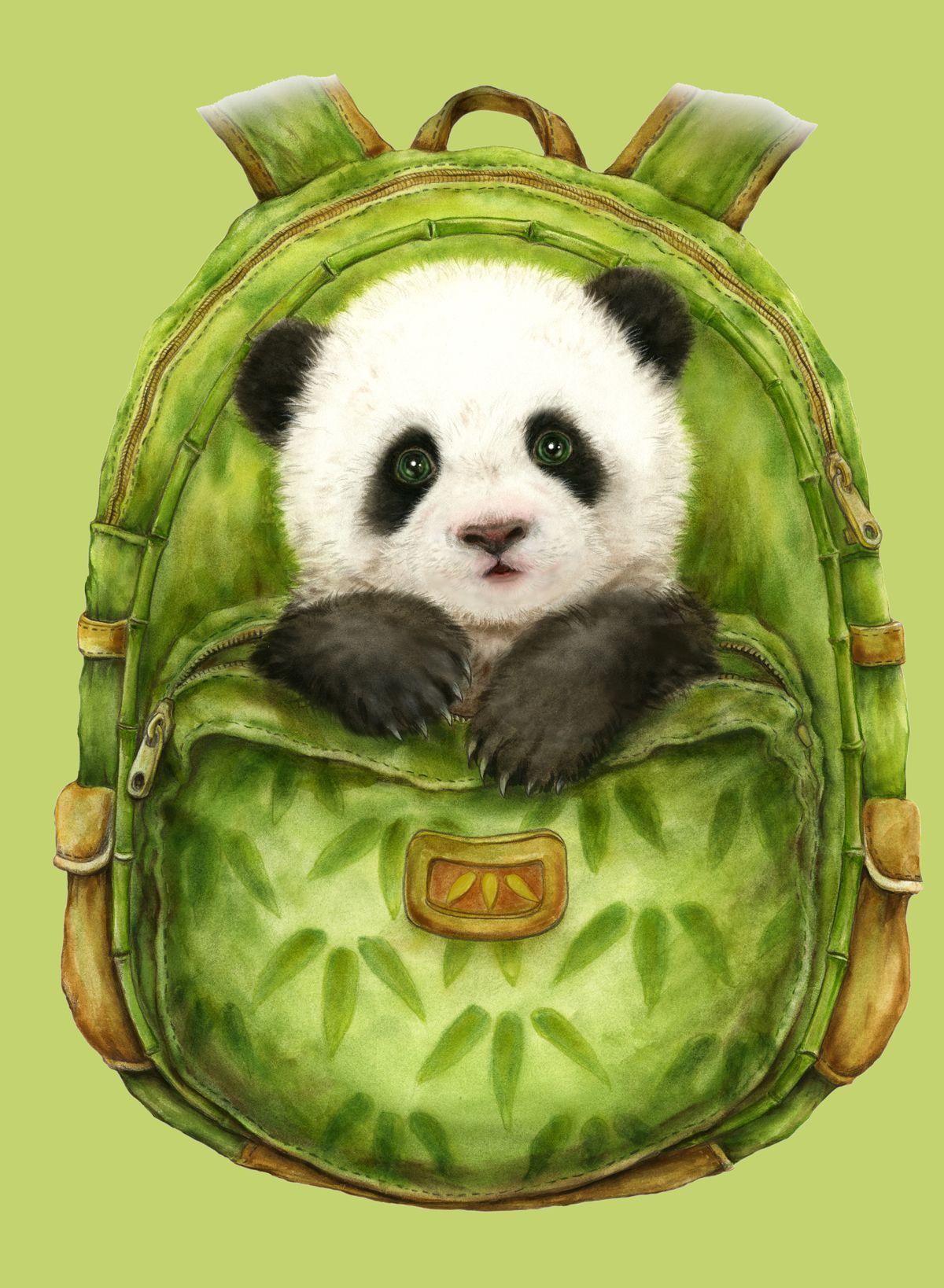 Желтые картинки, панда смешные картинки рисунки