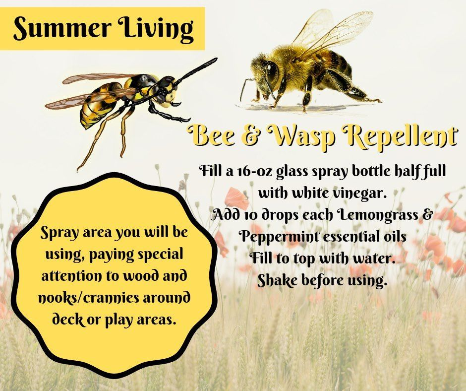 Bees and wasps like to play outside in the summer too