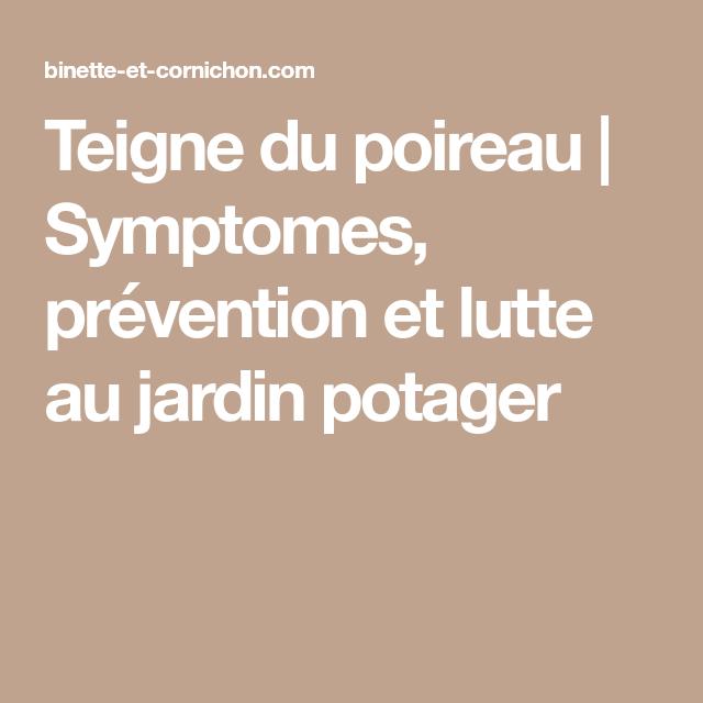 prevention teigne