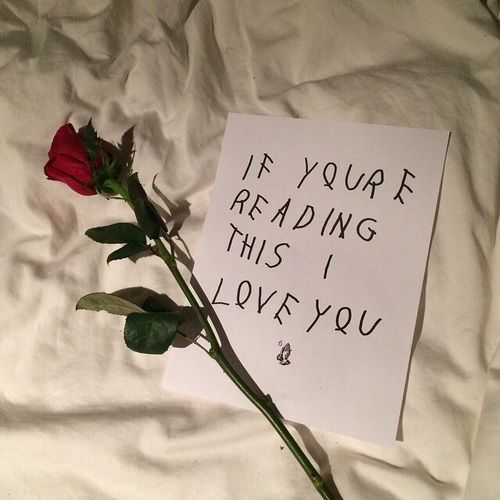 Image Result For Tumblr Red Rose Aesthetics