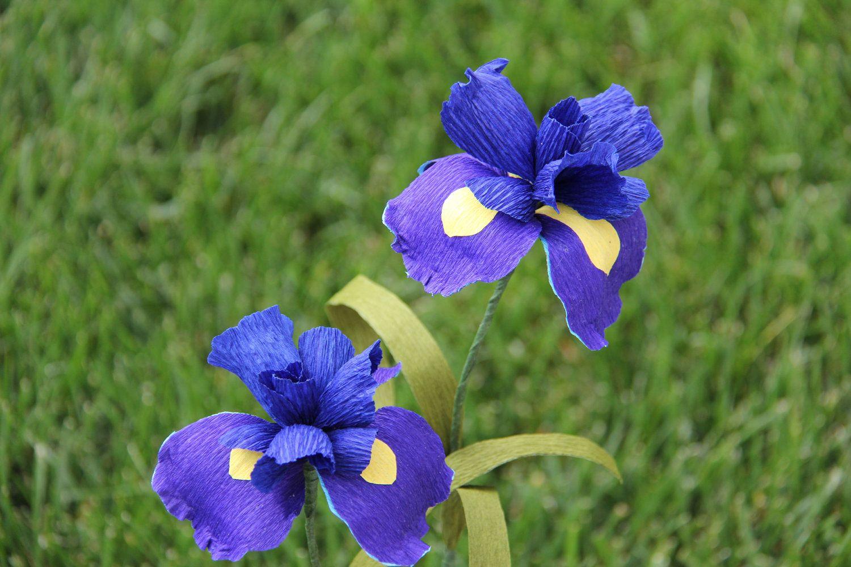 Blue Iris Flowers Set Of 2 Crepe Paper Flowers Wedding