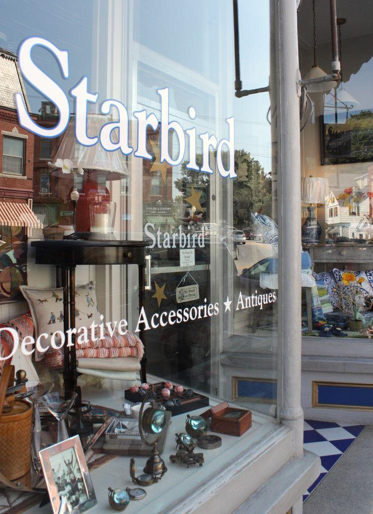 Starbird window display