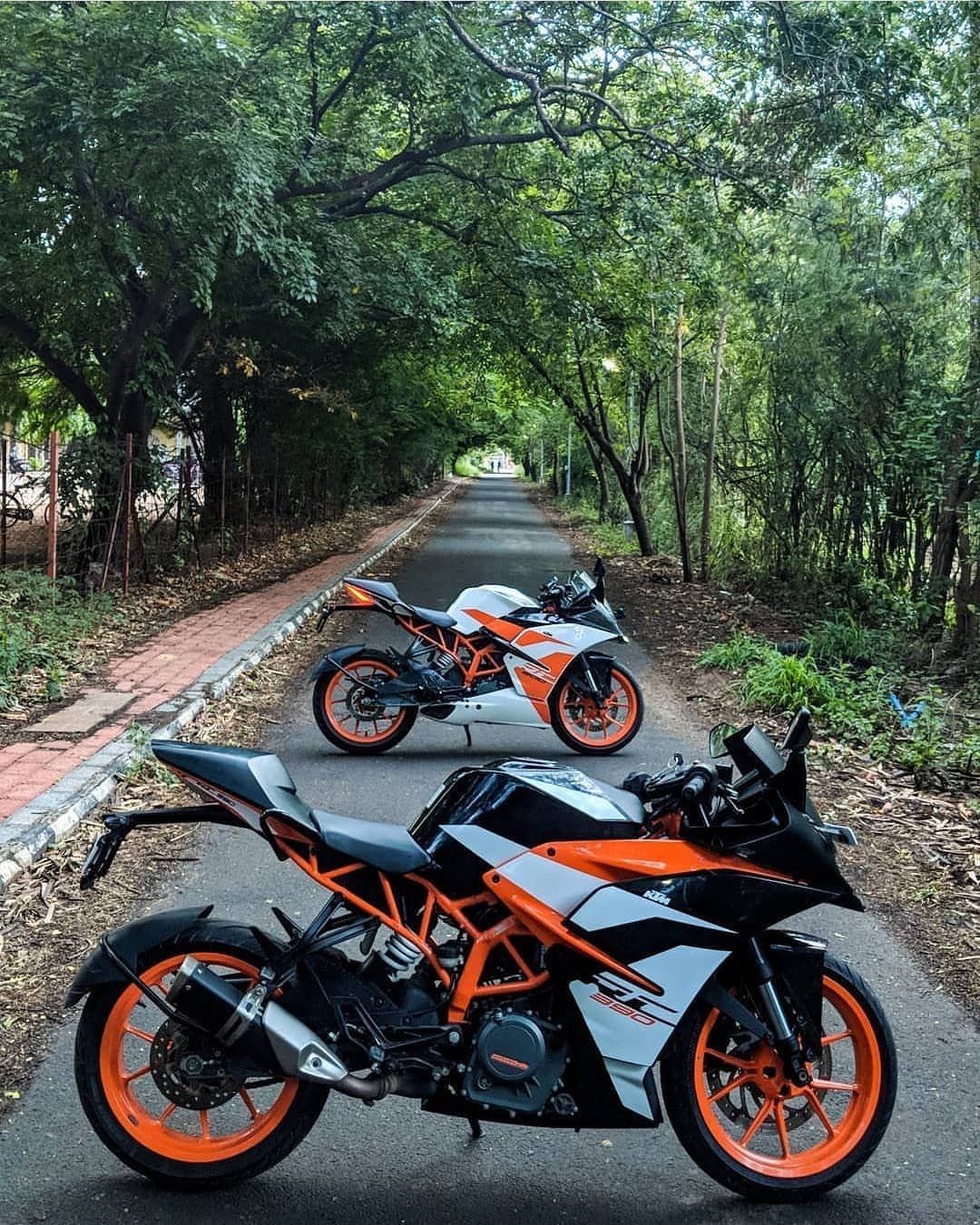 Image May Contain Motorcycle Tree Outdoor And Nature With