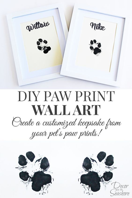 2f509c17a02e How cute is this DIY paw print wall art? What an adorable memento for their  little paw prints. I so need to do this with my dogs! |  decorbytheseashore.com