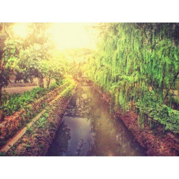 Taman Kota Tebet #instagram #iphoneography #iphonesia #photooftheday #picoftheday #pixoftheday #iphone #iphoneonly #instagood #jj #iphone4 #ig #instagramhub #instamood #popular #bestoftheday #hdr #gang_kaskus #ikaskus - @is0moto- #webstagram