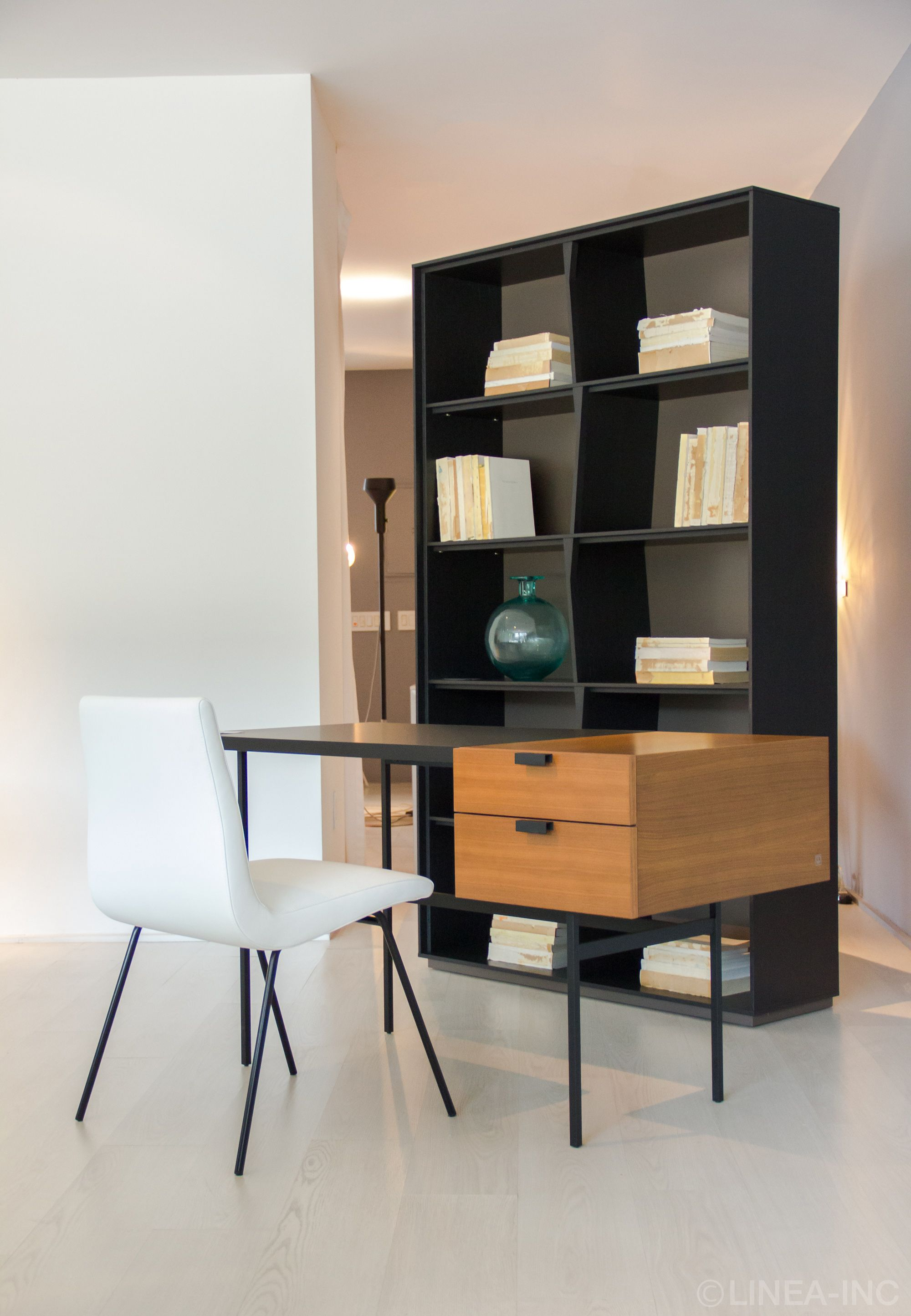 . TV Chair  Tanis Desk    Lapa Bookshelf by  LigneRoset  LINEA Inc