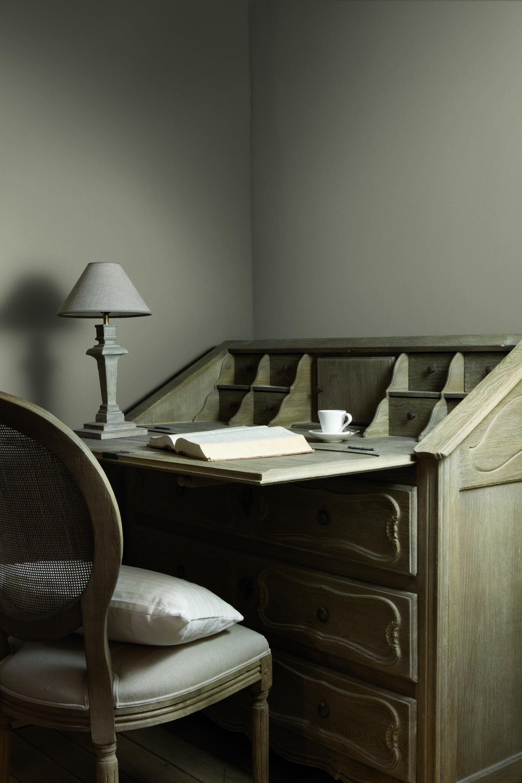 Ou Trouver La Peinture Tollens flamant tollens shiitake (avec images)   peinture flamant