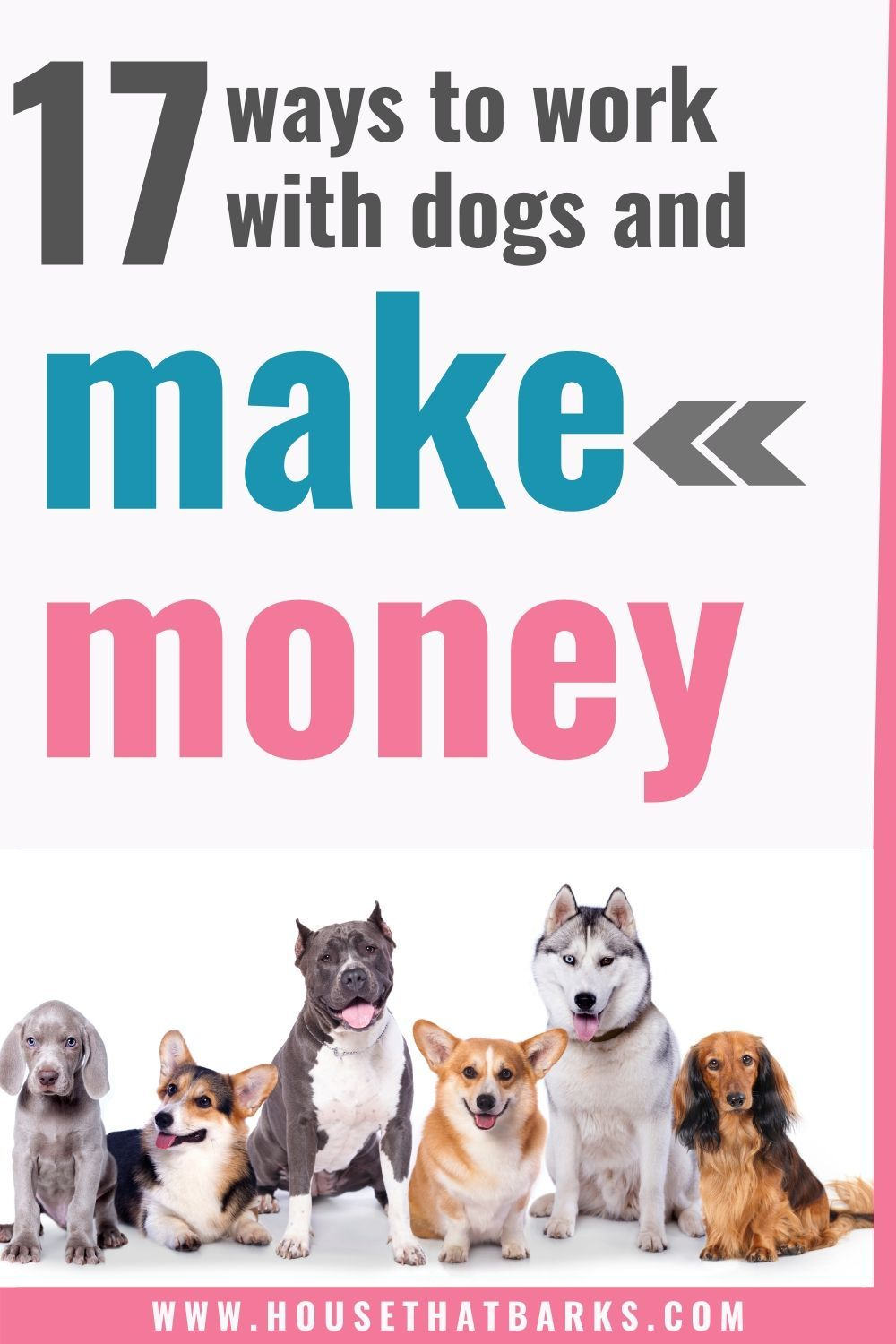 You Can Make Money Working With Dogs Dog Jobs Making Money