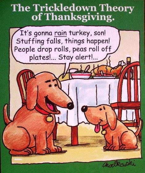 Happy Thanksgiving From Ti Goldenretriever Dog Thanksgiving Dog Lovers Funny Dogs