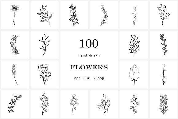 100 Hand Drawn Flowers by NatalieArtShop on